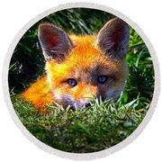 Little Red Fox Round Beach Towel by Bob Orsillo