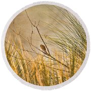Round Beach Towel featuring the photograph Lone Bird by Anne Rodkin