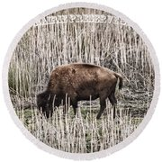 Lone Buffalo Round Beach Towel