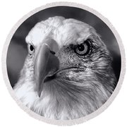 Round Beach Towel featuring the photograph Lone Eagle by Adam Olsen