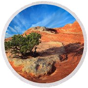 Lone Juniper Round Beach Towel