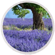Lone Tree In Lavender Round Beach Towel