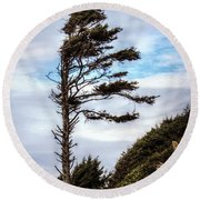 Round Beach Towel featuring the photograph Lone Tree by Melanie Lankford Photography