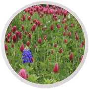 Lonely Bluebonnet Round Beach Towel