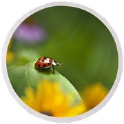 Lonely Ladybug Round Beach Towel by Christina Rollo