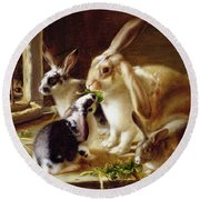 Long-eared Rabbits In A Cage Watched By A Cat Round Beach Towel by Horatio Henry Couldery