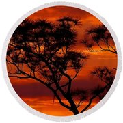 Long Leaf Pine Round Beach Towel