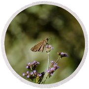 Long-winged Skipper Butterfly Round Beach Towel