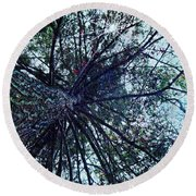 Look Up Through The Trees Round Beach Towel