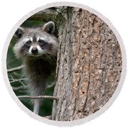 Looking For Food Round Beach Towel by Cheryl Baxter