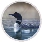 Round Beach Towel featuring the photograph Loon by Jack Bell