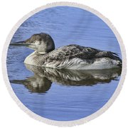 Loon On Vacation Round Beach Towel by Deborah Benoit
