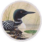 Loon's Tranquil Shore Round Beach Towel