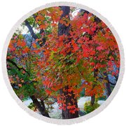 Lost Maples Fall Foliage Round Beach Towel