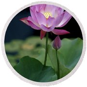 Lotus Blossom Round Beach Towel