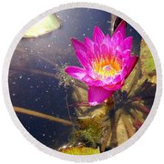 Lotus Day Round Beach Towel