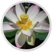Lotus Flower Round Beach Towel by Chrisann Ellis
