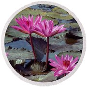 Round Beach Towel featuring the photograph Lotus Flower by Sergey Lukashin