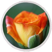 Louisiana Orange Rose Round Beach Towel