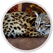 Lounging Leopard Round Beach Towel