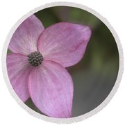 Round Beach Towel featuring the photograph Pink Four by Jacqui Boonstra