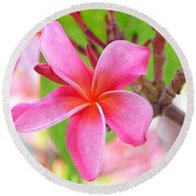 Round Beach Towel featuring the photograph Lovely Plumeria by David Lawson