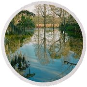 Low Country Swamp Round Beach Towel