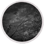 Loxahatchee Heron At Sunset Round Beach Towel