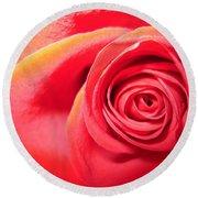 Luminous Red Rose 1 Round Beach Towel