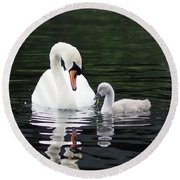 Lunchtime For Swan And Cygnet Round Beach Towel