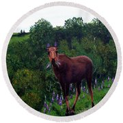 Round Beach Towel featuring the painting Lupine Loving Moose by Barbara Griffin