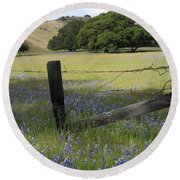Lupines And Oaks Round Beach Towel