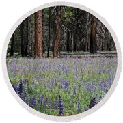 Round Beach Towel featuring the photograph Lupines In Yosemite Valley by Lynn Bauer