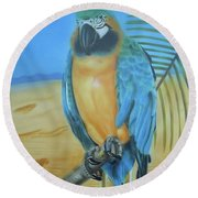 Round Beach Towel featuring the painting Macaw On A Limb by Thomas J Herring