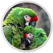 Round Beach Towel featuring the photograph Macaws In Love by Diane Merkle