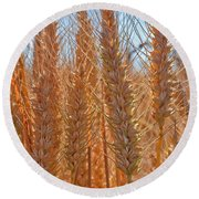 Round Beach Towel featuring the photograph Macro Of Wheat Art Prints by Valerie Garner