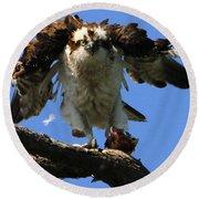 Mad Osprey Round Beach Towel
