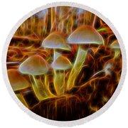 Magic Mushroom-3 Round Beach Towel