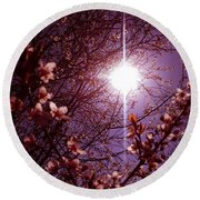 Round Beach Towel featuring the photograph Magical Blossoms by Vicki Spindler