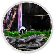 Walk In Magical Land Of The Black And White Ruffed Lemur Round Beach Towel