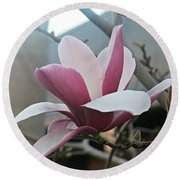 Round Beach Towel featuring the photograph Magnificent Magnolia Blossom by Leanne Seymour