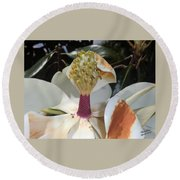 Magnolia Magnicence  Round Beach Towel