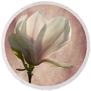 Round Beach Towel featuring the photograph Magnolia by Ann Lauwers