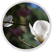 Magnolia Blossoms Round Beach Towel
