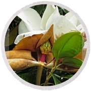 Magnolia Flowers - Flower Of Perseverance Round Beach Towel