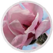 Magnolia In Spring Round Beach Towel