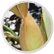 Magnolia Serenity - Signed Round Beach Towel
