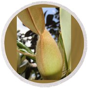 Magnolia Serenity - Signed Round Beach Towel