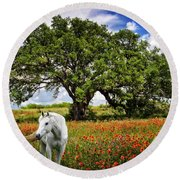 Majestic Beauty Round Beach Towel