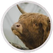 Majestic Highland Cow Round Beach Towel